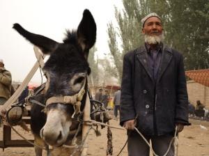 454-man-donkey