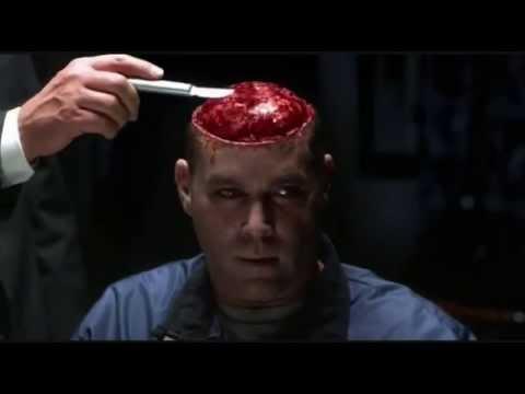trump-brain
